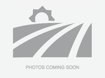 No photos - BLISS Imobiliare